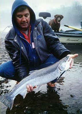 Russian River Steelhead